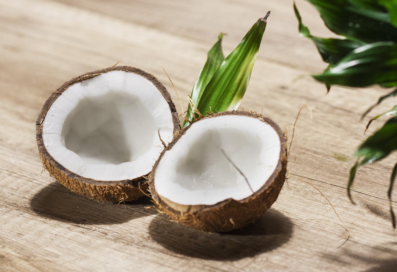 Histamine arme Kokos Yoghurt