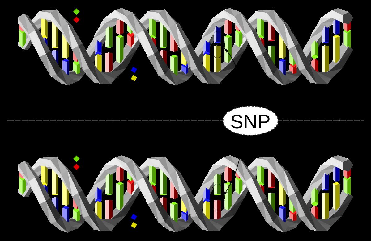 Genen lezen