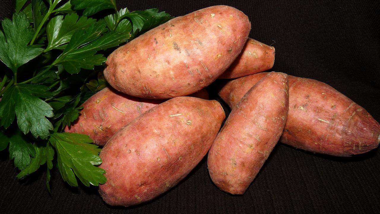Waterkastanje-zoete aardappel glutenvrije crackers