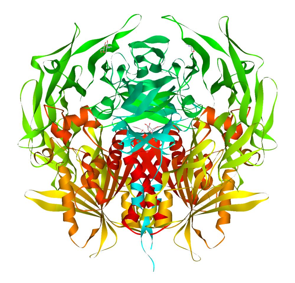 DPP4 een histamine afbrekend enzym